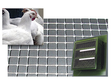 Wire for welded panels for chicken batteries, rabbit cages